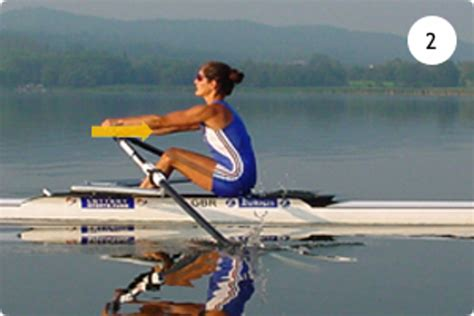 2 Person Crew Boat by Introduction To Rowing
