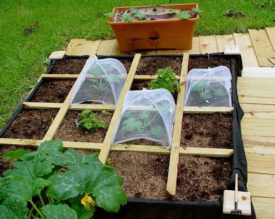 Square Foot Gardening by Llyynn Lots Of Square Foot Gardening
