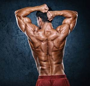 Best Bodybuilding Workout For Lats