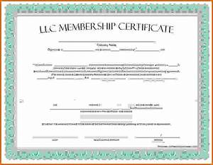 membership certificate templatereference letters words With llc membership certificate template word