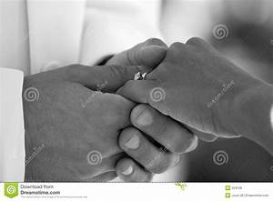 Bride And Groom Hands Royalty Free Stock Image - Image: 254126
