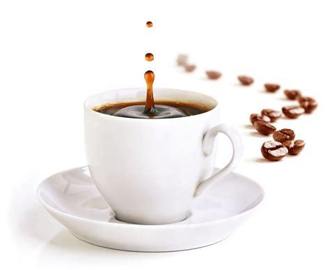 Kaffe   Showlife