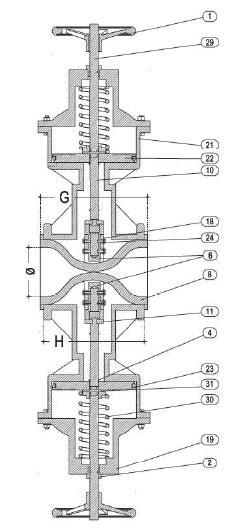 GS20 - Pinch Valves