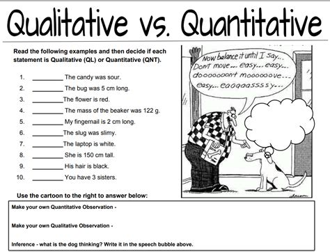 qualitative vs quantitative worksheet qualitative vs quantitative observations worksheet