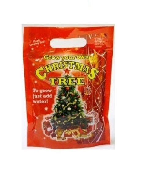 add to xmas tree water grow your own real tree with seeds and soil just add water pm269 ebay