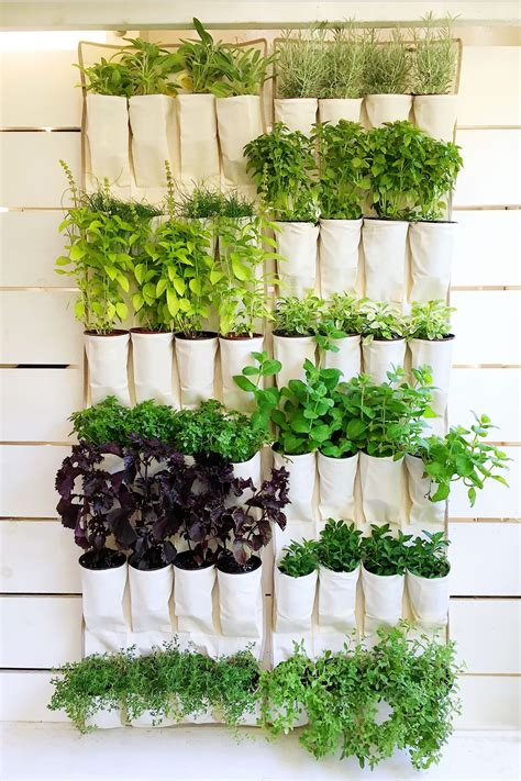 Hanging Vertical Garden by A Hanging Canvas Shoe Organizer Repurposed Into A Vertical