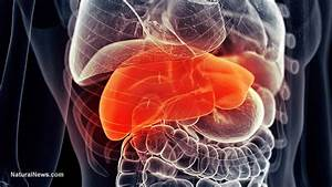 Early Signs Of Liver Damage That Everyone Should Know