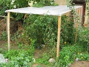 bastelitisde tomaten langere ernte durch regenschutz With whirlpool garten mit balkon ohne dach regenschutz