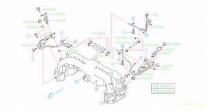 2005 Subaru Legacy Hose Fuel  36d  Pipe  Manifold  Intake