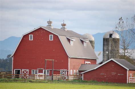 rustic medicine written in lynden barn white barn foggy barn