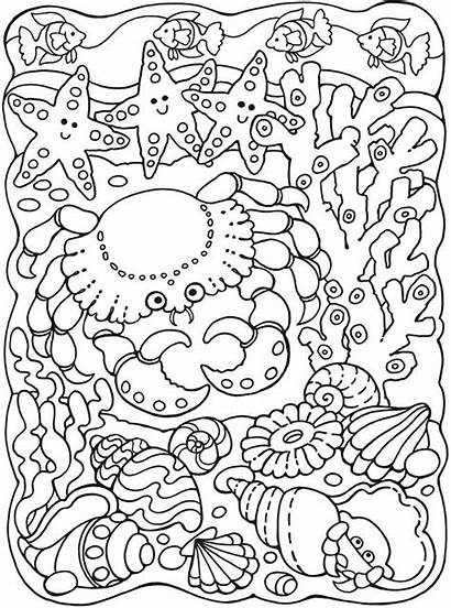 Coloring Sea Pages Colouring Adult Animal Under