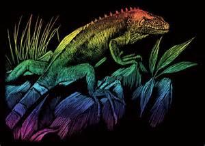 Rainbow Iguana