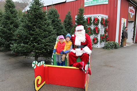 cut your own christmas tree lexington ky flemings tree farm cut your own tree indiana pa