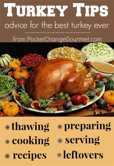 how big of a turkey do i need preparing for thanksgiving turkey tips pocket change gourmet