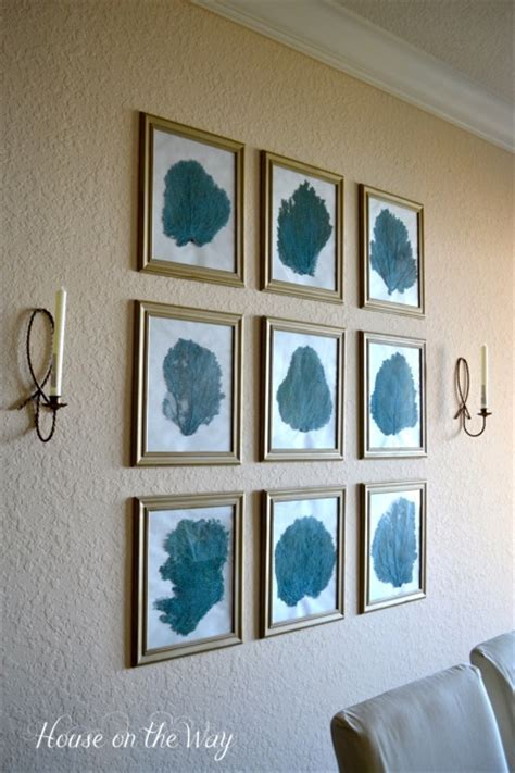 Hometalk   DIY Sea Fan Wall Decor