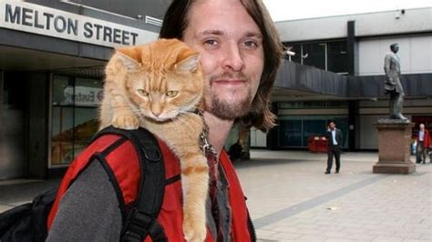 The Big Issue Help Give Bob The Cat And James A Pitch At