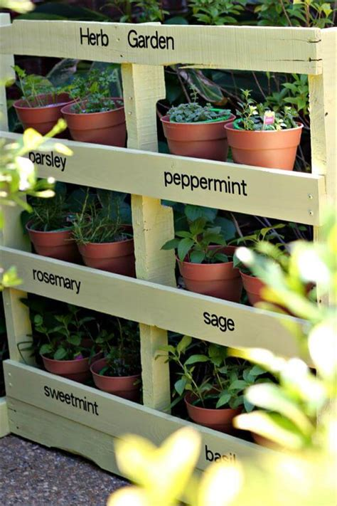 Diy Patio Herb Garden pallet herb garden tutorial 99 pallets
