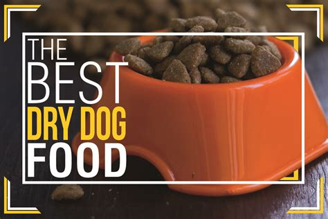 what is the best cat food best dry dog food uk top dry dog food brands