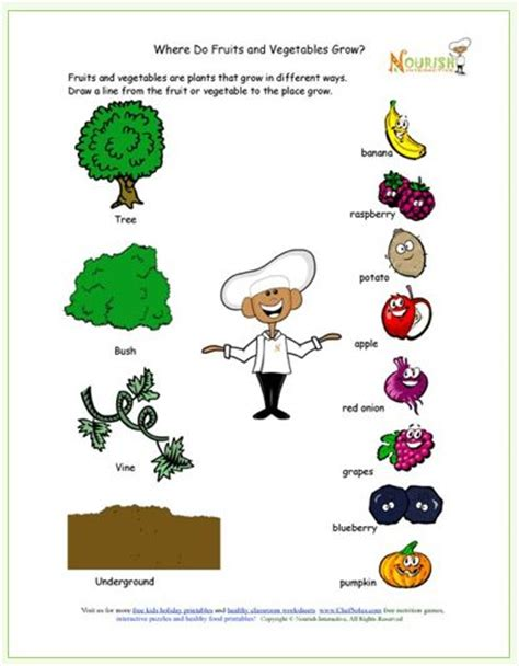printable learning about how food grows free