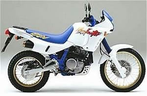 Honda Dominator 650 Fiche Technique : honda nx 650 dominator 1992 fiche moto motoplanete ~ Medecine-chirurgie-esthetiques.com Avis de Voitures