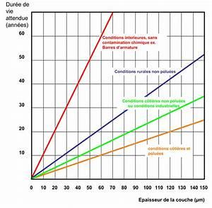 Durée De Vie D Un Moucheron : dur e de vie attendue ~ Farleysfitness.com Idées de Décoration