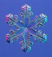 Image result for Real snowflakes