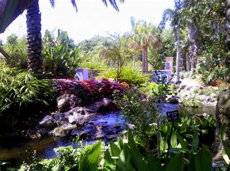 Botanical Gardens Largo Fl by Places To Go Things To Do Florida Botanical Gardens