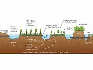 Talbert Lake Stormwater Diversion And Wetland Treatment