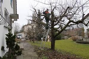 Bäume Schneiden Wann : gartenarbeiten liegenschaftenunterhalt und h ckseldienst ~ Lizthompson.info Haus und Dekorationen