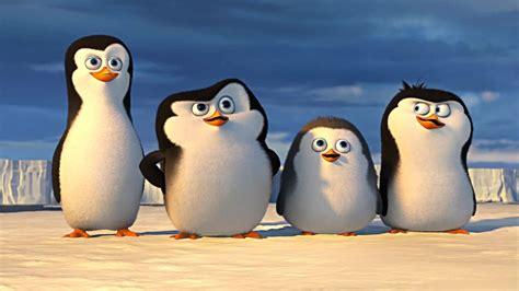 les penguins de madagascar full hd télécharger