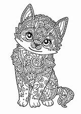 Coloring Cat Cats Kitten Pages Children Patterns Animals Complex sketch template