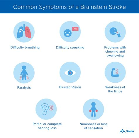 What Is A Brainstem Stroke?  Saebo. Six Perfections Signs. Body Shapes Signs Of Stroke. Coming Soon Signs. Airport Delhi Signs Of Stroke. Testicular Cancer Signs. Clipart Paris Signs Of Stroke. Full Signs Of Stroke. Wrinkled Fingertip Signs