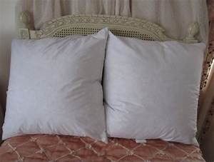 Feather and down euro pillow sham inserts vs poly filled for Best down pillow inserts