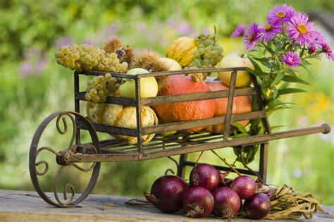 Garten Im Herbst Vorbereiten by Garten Auf Herbst Vorbereiten