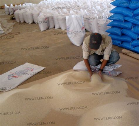 bureau veritas pakistan pakistan rice third inspection