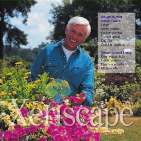 xeriscape drought proof your yard and still be the envy