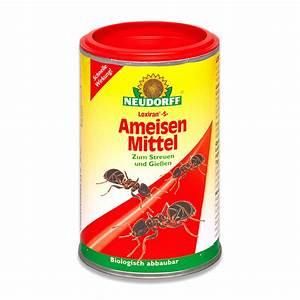 Mittel Gegen Mäuse Im Haus : neudorff loxiran s ameisenmittel ameisenbek mpfung ~ Lizthompson.info Haus und Dekorationen