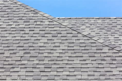 Asphalt Roofing Shingles How To Insulate A Flat Roof Standing Seam Digital Antenna Ridge Beam Squirrel In 3 Tab Roofing Contractors Kingsport Tn Companies Nh