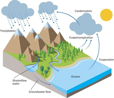 water cycle project ideas science struck