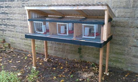 quail hutches epic quailblog housing for quail