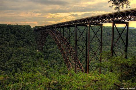 hd virginia forest railroad road bridge train