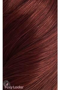 "Mahogany  Superior 20"" Clip In Human Hair Extensions 230g  from Foxy Locks Ltd UK"