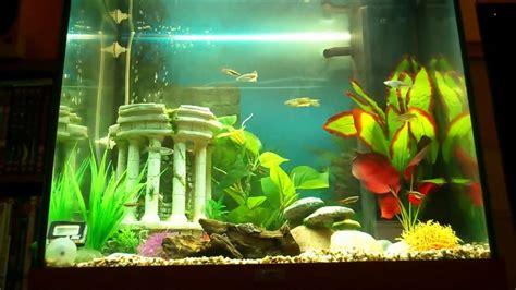 aquarium aquatlantis 120 litres juwel lido 120 litre aquarium