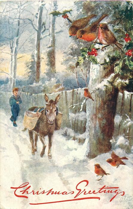 robins  boy  donkey coming  snow