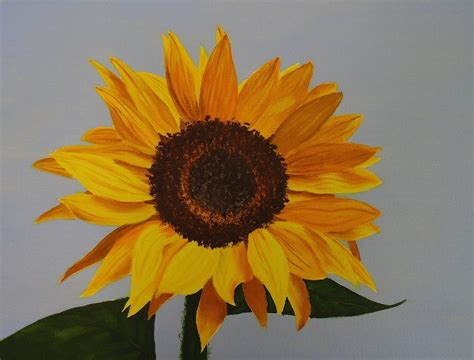 how to paint sunflowers in lessons