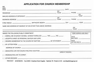 board member application template - board member bio template free templates resume