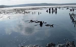 Крым межводное лечение псориаза