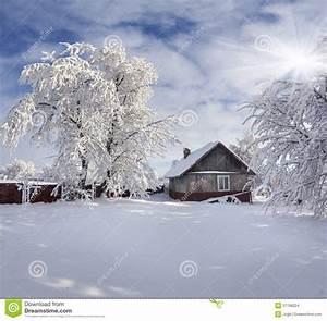 Winter Fairytale, Heavy Snowfall Stock Photo - Image of ...