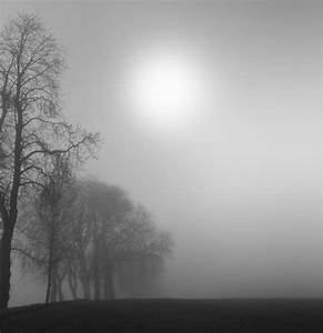 Quotes About Fog And Mist. QuotesGram