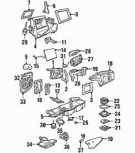 1999 Ford Expedition Parts - Ford Parts Center